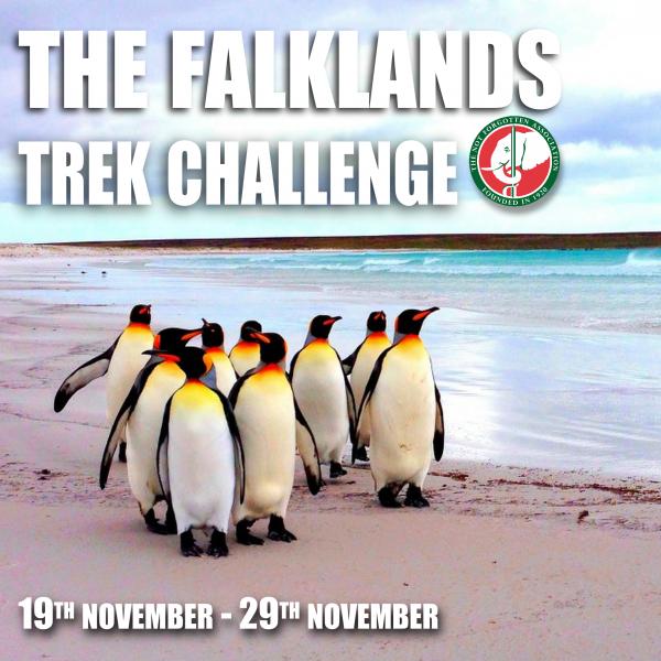 Falklands Insta