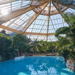 Eleveden Forest Center Parcs 2